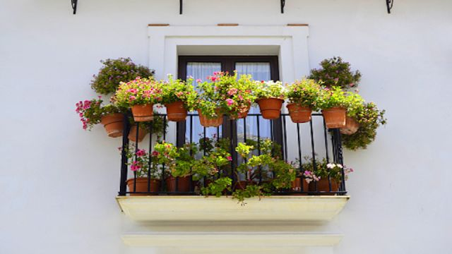 Beautify Your Patio With These Small Space Garden Ideas
